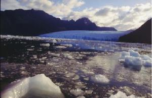 Tidewater Glacier